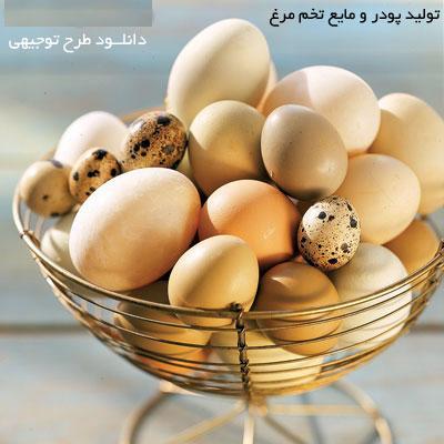 طرح توجیهی توليد پودر و مایع پاستوریزه تخم مرغ