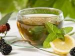 طرح کسب و کار توليد چاي كيسه اي گياهان داروئي
