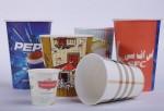 طرح توجیهی تولید ظروف یکبار مصرف کاغذی