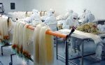 طرح توجیهی تولید محصولات پزشکی از آبزیان