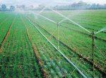 طرح توجیهی تولید سیستم آبیاری تحت فشار بارانی