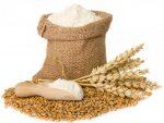 طرح توجیهی تولید انواع آرد با درجات مختلف