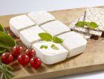 طرح توجیهی کارخانه تولید پنیر UF