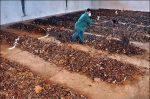 طرح توجیهی تولید کمپوست از زباله های شهری